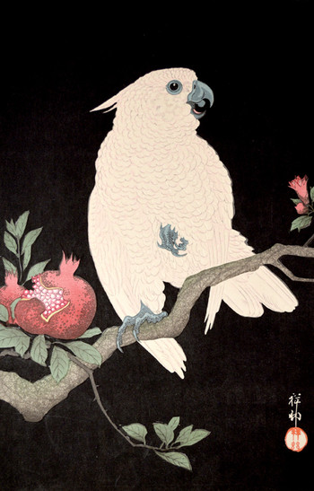 Koson: Birds and Blossoms